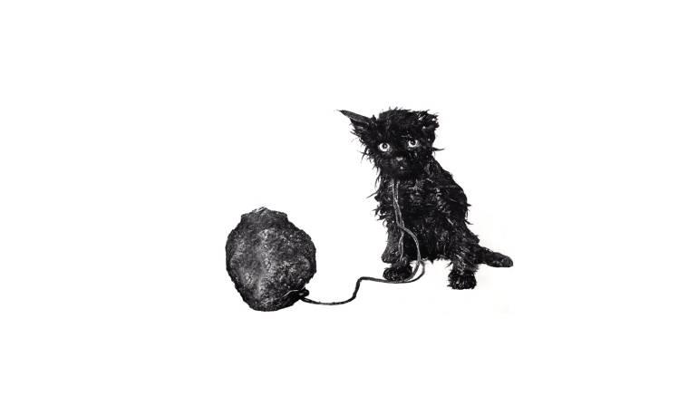 Kiss the Anus of a Black Cat